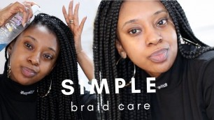 My Simple Braid care routine - Reduce Frizz| Protective Style