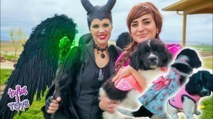 'Frozen Anna and Maleficent Have a FASHION SHOW with Ducky the PUPPY!!'